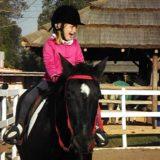 La importancia del casco de equitación